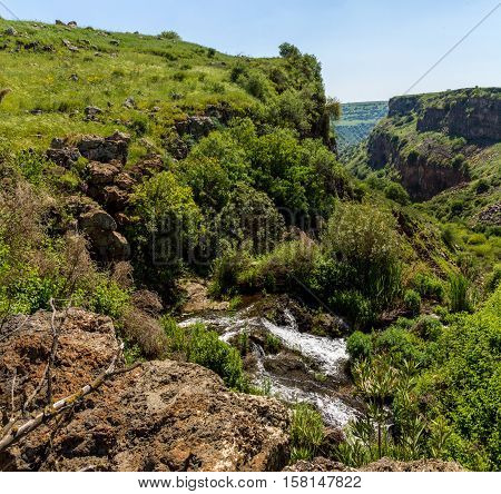 The Gamla stream one of the two streams in the Gamla nature reserve the Golan Heights in Israel