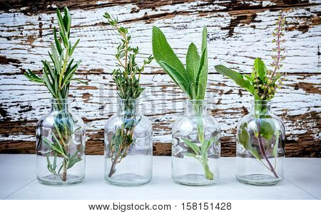 Close Up Bottle Of Essential Oil With Various Herbs Rosemary, Sage,holy Basil  And Thyme  Set Up On