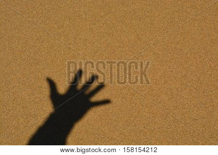 Five fingers hand shadow on a sea beach sand smooth wet surface natural background. Photo made in a sunny summer day.