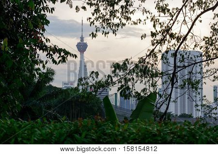 Kuala Lumpur Malaysia - January 16 2016: a view of the KL Tower commucation tower between palms and plant