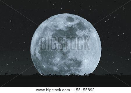 Full moon at night with stars with silhouette glass lawn. full moon background, element of this images from NASA