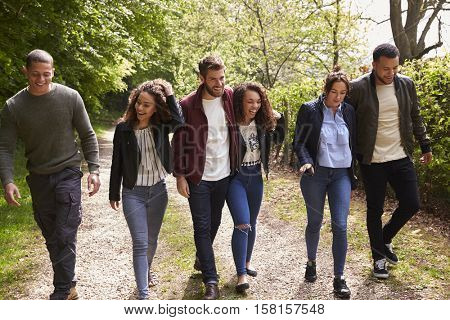 Six young adult friends walking together in a country lane