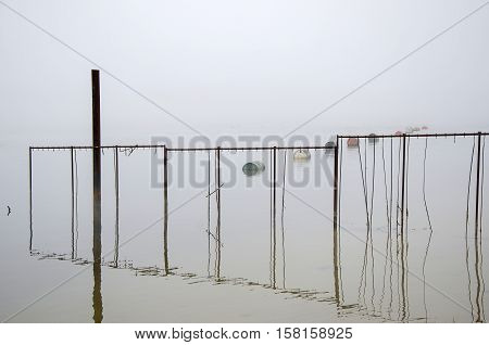 Scene on the river into foggy day. Barrels on water