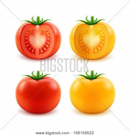 Vector Set of Big Ripe Red Yellow Green Fresh Cut Whole Tomatoes Close up Isolated on White Background