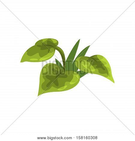 Wide Leaf Green Pant Isolated Element Of Forest Landscape Design For The Flash Game Landscaping Purposes. Video Game Details For The Woodland Level Vector Cartoon Illustration.
