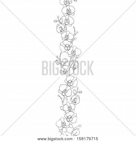 Seamless natural border of the branches of blooming orchids in bud draw the outline. Phalaenopsis. Background. Hand drawn vector illustration.