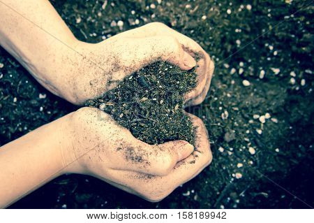 two female hands holding the earth in hands brown heart-shaped, I love the earth, the hands are in the right part of the photo processed