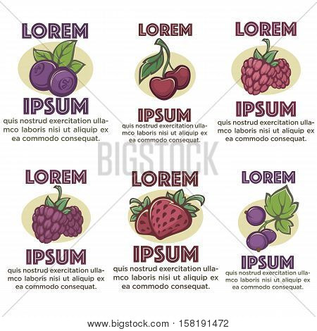 fresh  organic berry label and emblems  templates