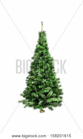 Christmas tree without ornaments isolated on a white background