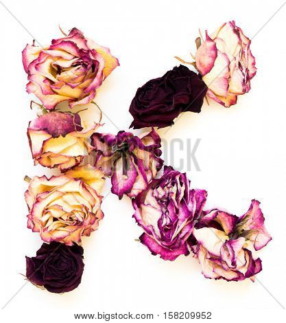 Rose dried Initials letter K.