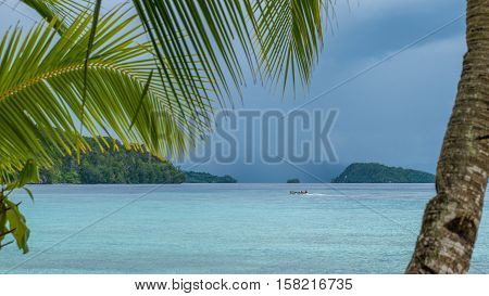 Beautiful Blue Lagoone with a Palmtree in Front, Gam Island, West Papuan, Raja Ampat, Indonesia.