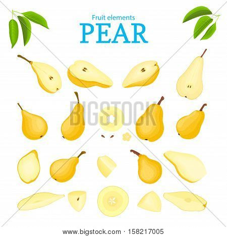 Vector set of yellow fruits. Pear fruit, whole, peeled, piece of half, slice, leaves, seed. Collection of delicious pears designer elements for use in packaging design projects flyer healthy eating