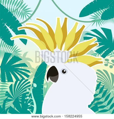 Flat Vector image of the Cockatoo on the Jungle Background