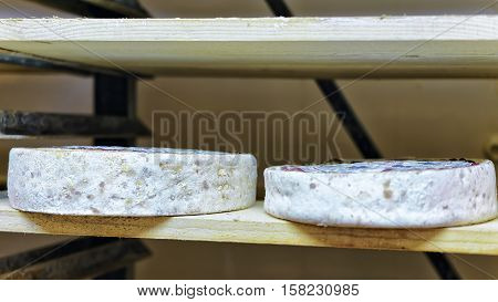 Aging Cheese At Maturing Cellar Franche Creamery