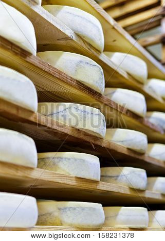 Aging Gruyere De Comte Cheese In Maturing Cellar At Creamery