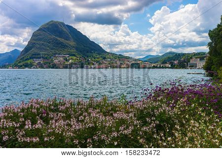 Botanical Garden At Promenade In Lugano Of Ticino In Switzerland