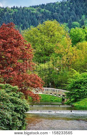 Bridge And River In Lichtentaler Allee Park In Baden Baden