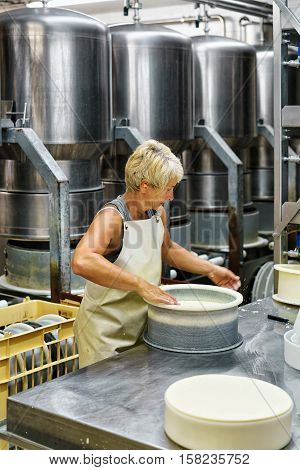Cheesemaker Putting Young Comte Cheese In Forms Dairy