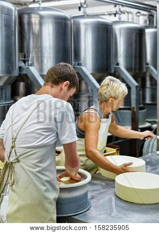Cheesemakers Putting Young Gruyere Comte Cheese In Forms In Dairy