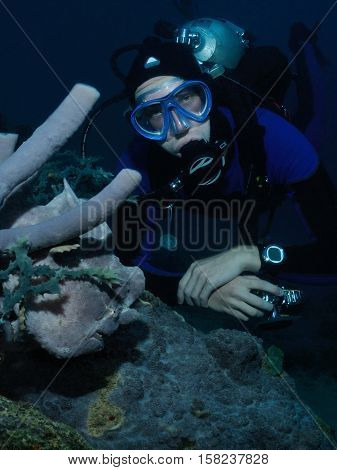 A diver is hovering near a grey giant frogfish Puerto Galera Philippines