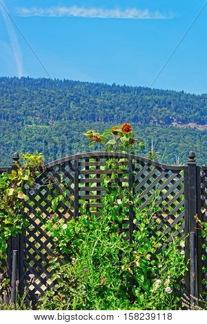 Entrance gate at inner yard in a Swiss village in Yverdon les Bains in Jura Nord Vaudois district of Canton Vaud Switzerland.