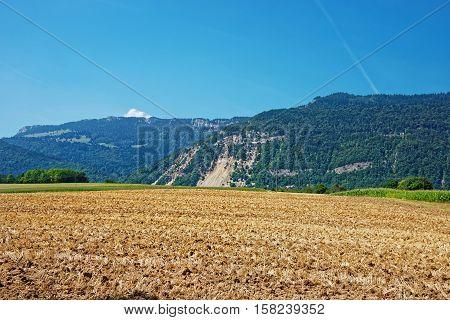 Field At Yverdon In Jura Nord Vaudois Vaud Swiss