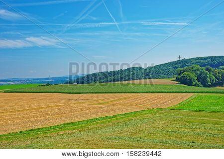 Fields In Yverdon In Jura Nord Vaudois Vaud Switzerland