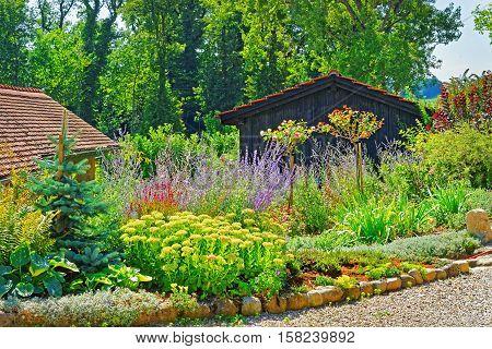 Flowers At Inner Yard In Yverdon In Switzerland