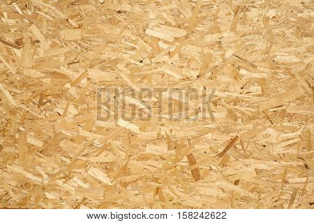 Oriented Strand Board. Wooden OSB panel made of pressed sandy brown wood shavings as background closeup