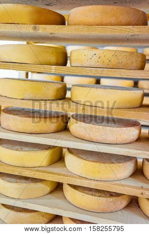 Stack Of Aging Cheese At Ripening Cellar Creamery Franche Comte