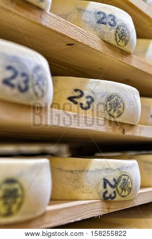 Stack Of Aging Cheese In Maturing Cellar Creamery Franche Comte