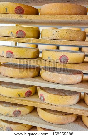 Stack Of Aging Cheese In Ripening Cellar Creamery Franche Comte