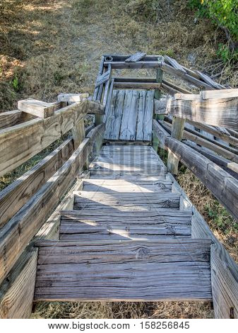 Old wooden stairs leading down from lookout point in Moremi National Park, Botswana, Africa. Looking down.