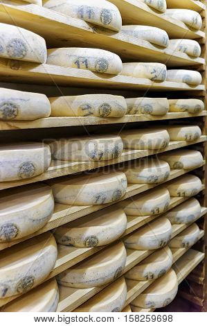 Wheels Of Aging Cheese In Maturing Cellar Franche Comte Creamery
