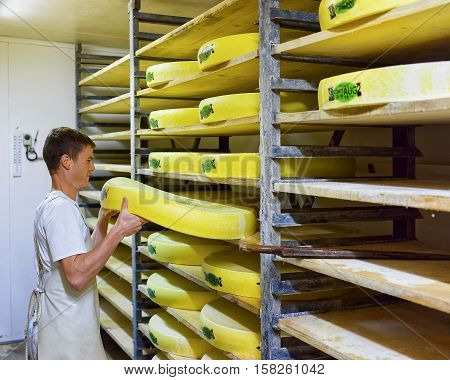 Worker In Ripening Cellar With Aging Conte Cheese Of Creamery