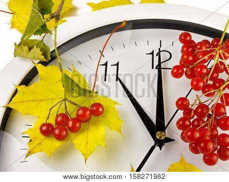 11 o'clock. Clock face with yellow leaves and red ripe viburnum. Autumn time.