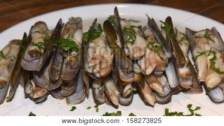razor shell with parsley on a white plate