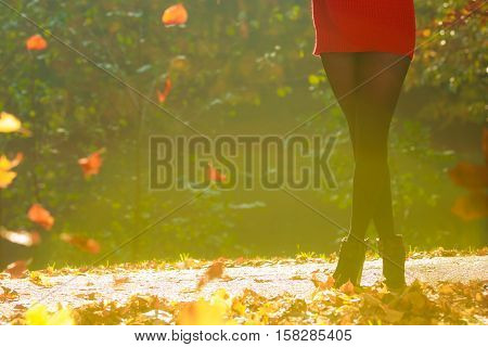 Girl's legs in foliage. Part of female body in woodland. Nature outdoor foliage relax concept.