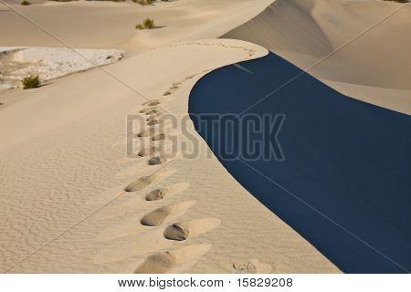 Sand Dune edge, Death Valley