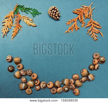 Closeup still life of cedar arborvitae red. yellow and green leaves heap of acorns and pine cone. Autumn Fall harvest concept. Grungy frame background with copy space for text.