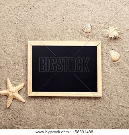 Blank chalk board on sand with shells and starfish top view