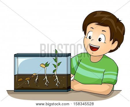 Illustration of a Cute Little Boy Observing His Germination Experiment with Glee