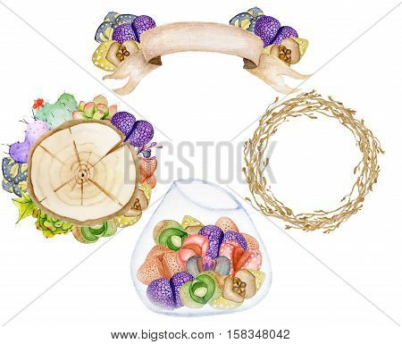 Watercolor set with succulents. Hand drawn raster illustration. Living stones. Banner wood slices branch wreath terrarium