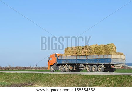 Truck Carrying Hay In His Body. Making Hay For The Winter.