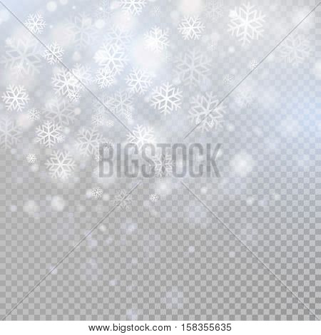 Bokeh light gray sparkles on transparency background Glowing particles element for special effects.Vector illustration EPS10