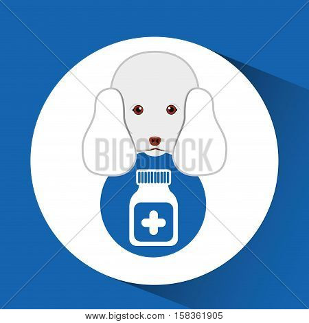 digital pet shop with poodle and container medicine vector illustration eps 10