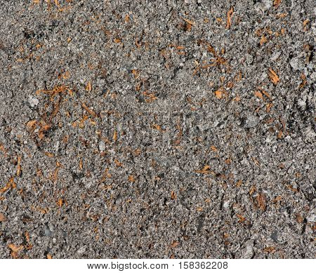 Cigarette cinder photographed as a background and texture