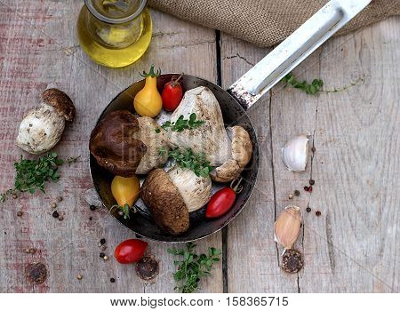 Mushrooms ceps with herbs with tomatoes in a skillet