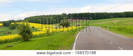 country road through hilly landscape blooming canola field at springtime
