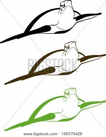turtle. graphic sea turtle, vector. turtle silhouettes on the white background
